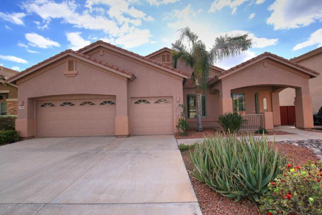 10623 E Kilarea Avenue, Mesa, AZ 85209 (MLS #5699502) :: The AZ Performance Realty Team