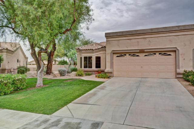 9032 W Marco Polo Road, Peoria, AZ 85382 (MLS #5699505) :: The AZ Performance Realty Team