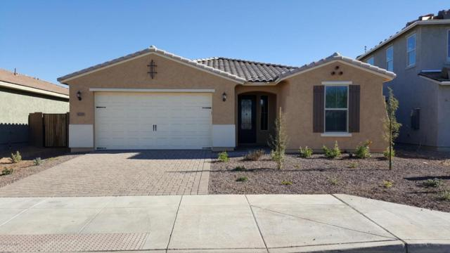 30719 N 25th Avenue, Phoenix, AZ 85085 (MLS #5699522) :: Kortright Group - West USA Realty
