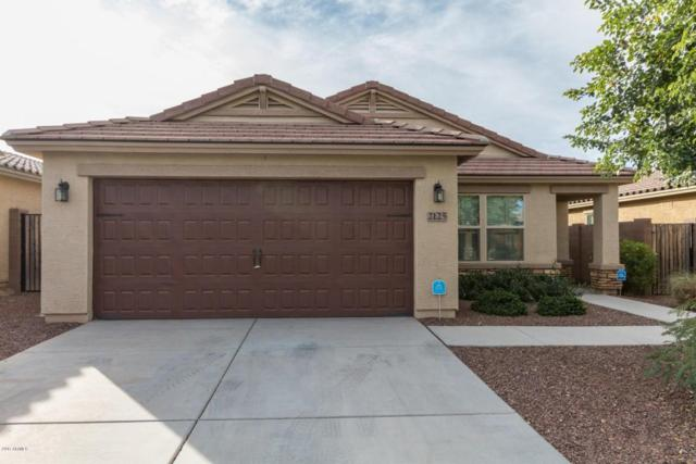 2125 E Campo Bello Drive, Phoenix, AZ 85022 (MLS #5699534) :: Brett Tanner Home Selling Team