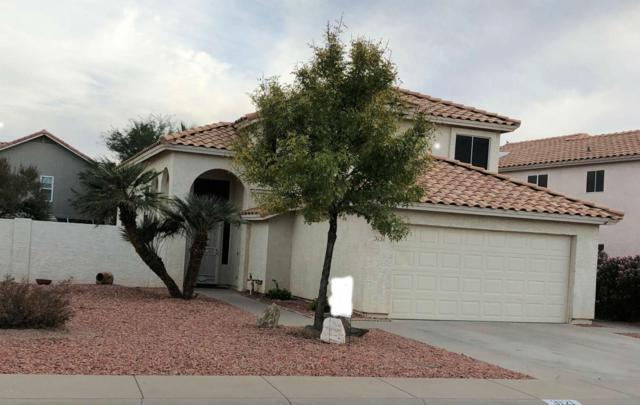 3121 E Cottonwood Lane, Phoenix, AZ 85048 (MLS #5699559) :: Brett Tanner Home Selling Team