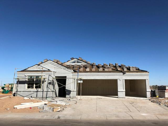 10515 W Graham Trail, Tolleson, AZ 85353 (MLS #5699604) :: Kortright Group - West USA Realty
