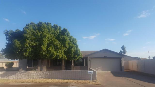 1027 N 60TH Avenue, Phoenix, AZ 85043 (MLS #5699644) :: Revelation Real Estate