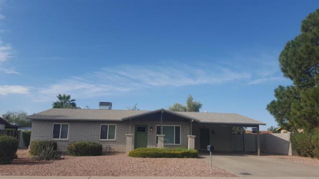 13410 N 37TH Avenue, Phoenix, AZ 85029 (MLS #5699653) :: Revelation Real Estate