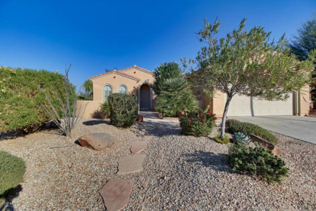 21002 N Circle Cliffs Drive, Surprise, AZ 85387 (MLS #5699752) :: Kortright Group - West USA Realty