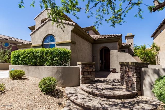 3824 E Daley Lane, Phoenix, AZ 85050 (MLS #5699769) :: Occasio Realty