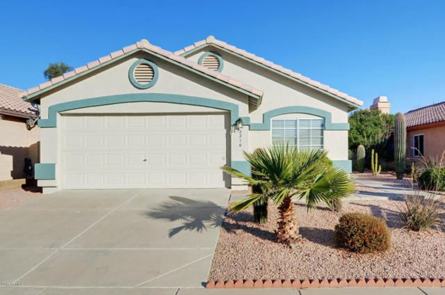 2216 E Wescott Drive, Phoenix, AZ 85024 (MLS #5699818) :: Kortright Group - West USA Realty