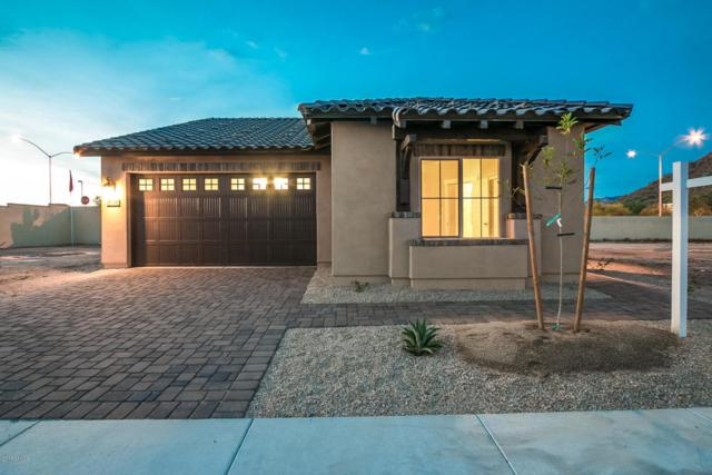 1156 N Estrada Street, Mesa, AZ 85207 (MLS #5699823) :: Kortright Group - West USA Realty