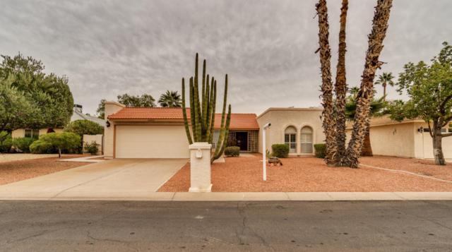 26405 S Sedona Drive, Sun Lakes, AZ 85248 (MLS #5699831) :: Kortright Group - West USA Realty