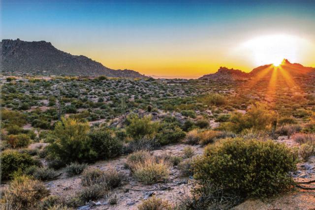 00 N 120th Street, Scottsdale, AZ 85255 (MLS #5699879) :: Phoenix Property Group
