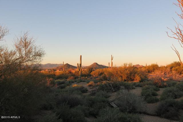 28004 N 103RD Place, Scottsdale, AZ 85262 (MLS #5700110) :: Lifestyle Partners Team