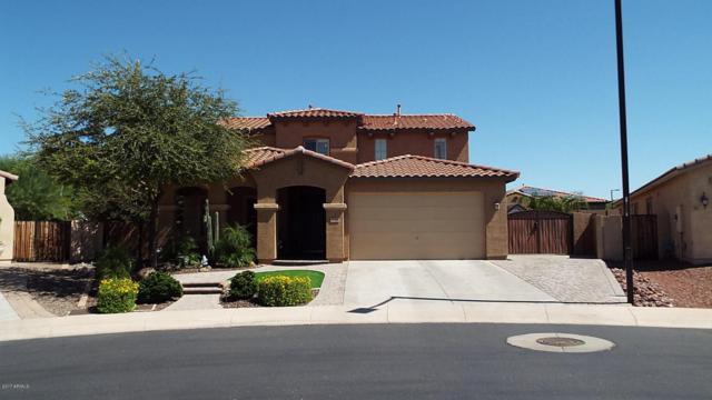7040 W Katharine Way, Peoria, AZ 85383 (MLS #5700594) :: The Laughton Team