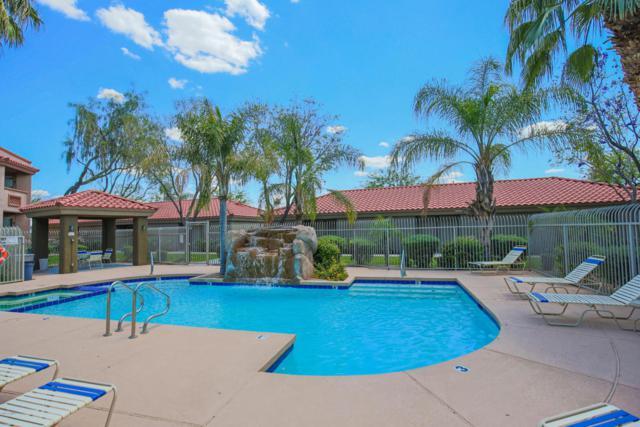 2929 W Yorkshire Drive #2104, Phoenix, AZ 85027 (MLS #5700647) :: Brett Tanner Home Selling Team
