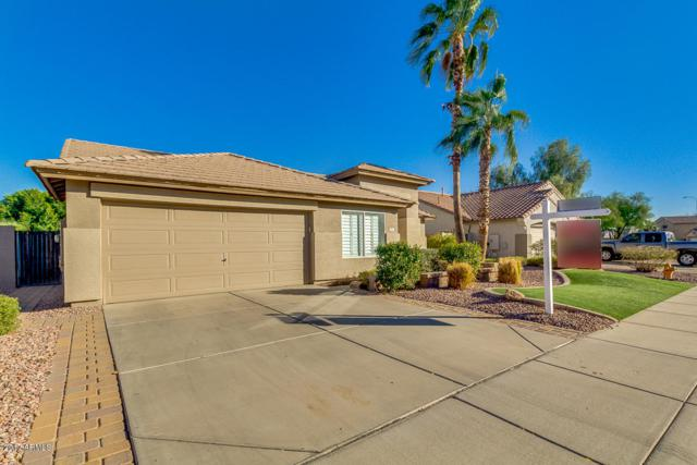 971 N Danyell Drive, Chandler, AZ 85225 (MLS #5701020) :: Kortright Group - West USA Realty
