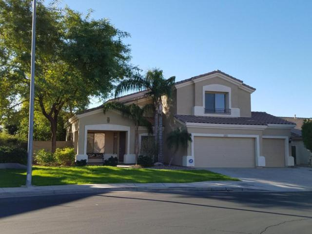 9943 E Laguna Azul Avenue, Mesa, AZ 85209 (MLS #5701229) :: The Kenny Klaus Team
