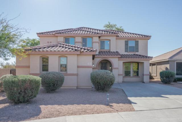 14933 W Columbine Drive, Surprise, AZ 85379 (MLS #5701300) :: The Everest Team at My Home Group