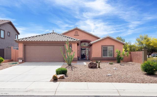 6683 E Hacienda La Noria Lane, Gold Canyon, AZ 85118 (MLS #5701823) :: The Everest Team at My Home Group