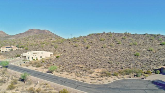 24213 N 65TH Avenue, Glendale, AZ 85310 (MLS #5702038) :: The Wehner Group