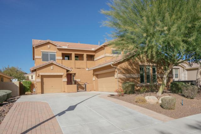 26914 N 54TH Avenue, Phoenix, AZ 85083 (MLS #5702165) :: Occasio Realty