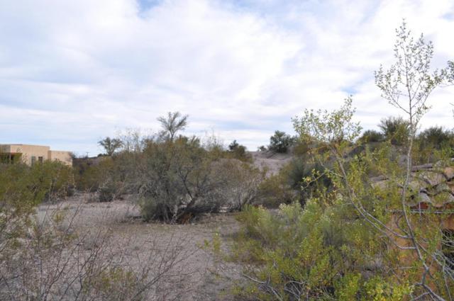 56202 N Vulture Mine Road, Wickenburg, AZ 85390 (MLS #5702366) :: Brett Tanner Home Selling Team