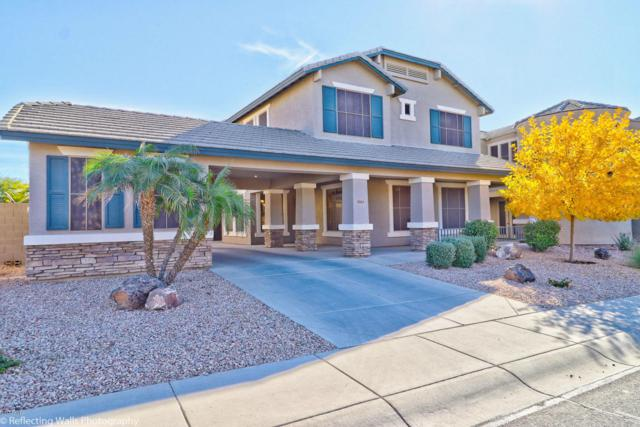 5919 N 125TH Avenue, Litchfield Park, AZ 85340 (MLS #5702682) :: Kortright Group - West USA Realty