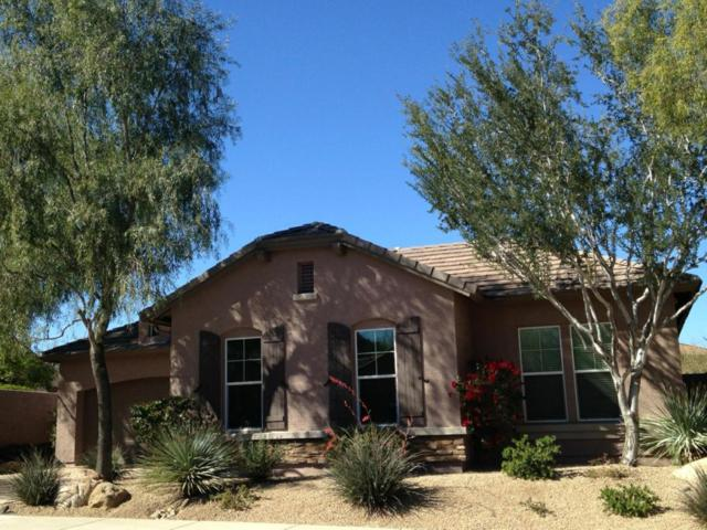 26116 N 85TH Drive N, Peoria, AZ 85383 (MLS #5702773) :: The Laughton Team