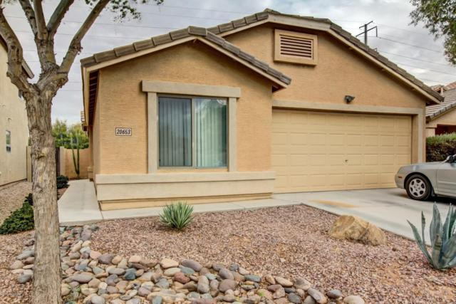 20653 N Herbert Avenue, Maricopa, AZ 85138 (MLS #5703168) :: The Everest Team at My Home Group