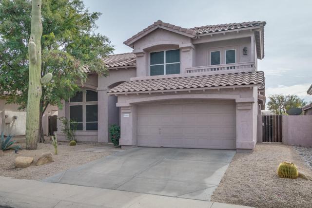 4305 E Rancho Caliente Drive, Cave Creek, AZ 85331 (MLS #5703867) :: RE/MAX Excalibur