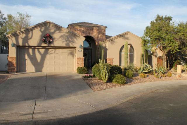 11946 E Del Timbre Drive, Scottsdale, AZ 85259 (MLS #5703964) :: Occasio Realty