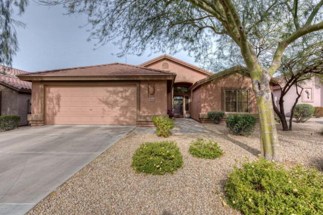 4622 E Thorn Tree Drive, Cave Creek, AZ 85331 (MLS #5703972) :: The Laughton Team