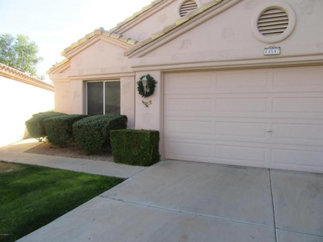 14597 W Winding Trail, Surprise, AZ 85374 (MLS #5704076) :: Desert Home Premier
