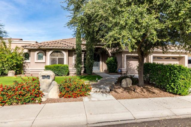 8040 W Camino De Oro, Peoria, AZ 85383 (MLS #5704156) :: Cambridge Properties