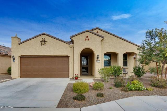 26846 W Escuda Drive, Buckeye, AZ 85396 (MLS #5704438) :: Desert Home Premier