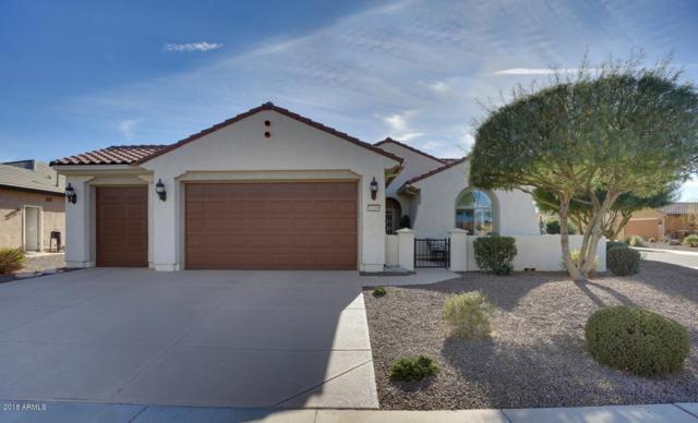 26269 W Horsham Drive, Buckeye, AZ 85396 (MLS #5704495) :: Desert Home Premier