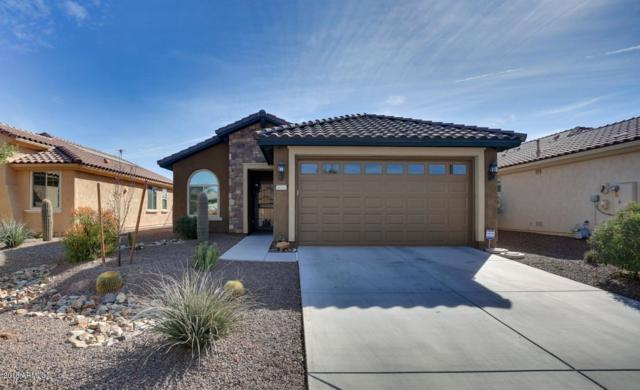26163 W Via Del Sol Drive, Buckeye, AZ 85396 (MLS #5704525) :: Desert Home Premier