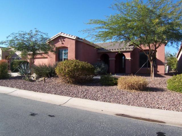 42604 W Sandpiper Drive, Maricopa, AZ 85138 (MLS #5704694) :: Yost Realty Group at RE/MAX Casa Grande
