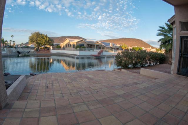 5586 W Rose Garden Lane, Glendale, AZ 85308 (MLS #5705371) :: REMAX Professionals