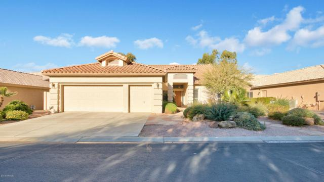 24742 S Stoney Lake Drive, Sun Lakes, AZ 85248 (MLS #5705373) :: Santizo Realty Group