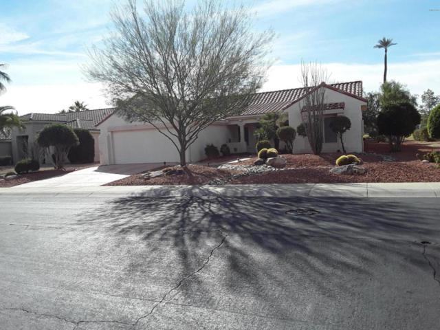 13925 W Via Tercero Drive, Sun City West, AZ 85375 (MLS #5705542) :: Yost Realty Group at RE/MAX Casa Grande