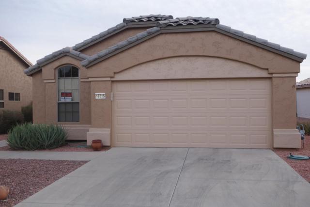 17615 W Babbitt Drive, Surprise, AZ 85374 (MLS #5705546) :: Desert Home Premier