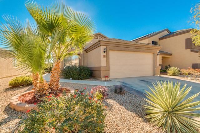 6423 E Lush Vista View, Florence, AZ 85132 (MLS #5705767) :: Yost Realty Group at RE/MAX Casa Grande