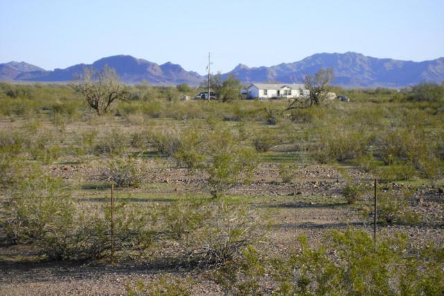 42700 W Bethany Home Road, Tonopah, AZ 85354 (MLS #5705774) :: Brett Tanner Home Selling Team