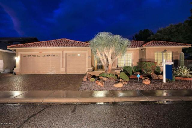 20415 N 53RD Avenue, Glendale, AZ 85308 (MLS #5706429) :: The Laughton Team