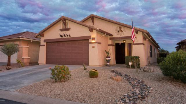 10055 E Meandering Trail Lane, Gold Canyon, AZ 85118 (MLS #5706441) :: Essential Properties, Inc.