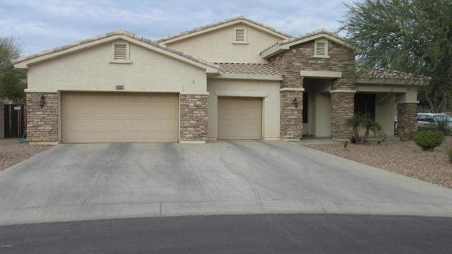 11127 N 153RD Drive, Surprise, AZ 85379 (MLS #5706458) :: Occasio Realty