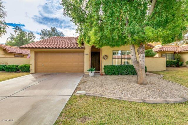 12214 S Shoshoni Drive, Ahwatukee, AZ 85044 (MLS #5706701) :: The Daniel Montez Real Estate Group