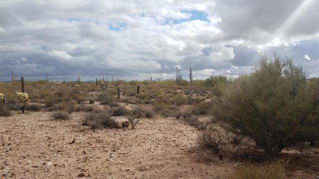 0 W Sagewood Lane, Florence, AZ 85132 (MLS #5707060) :: Riddle Realty