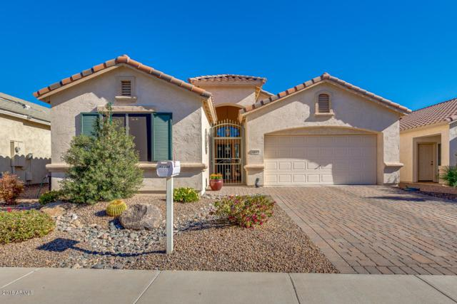 18329 N Canal Drive, Surprise, AZ 85374 (MLS #5707067) :: Desert Home Premier