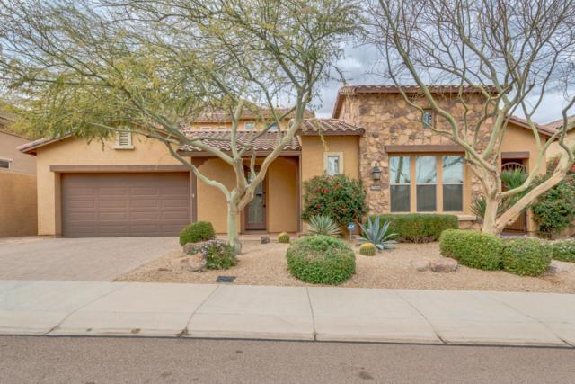 25956 N 85TH Drive, Peoria, AZ 85383 (MLS #5707209) :: The Laughton Team