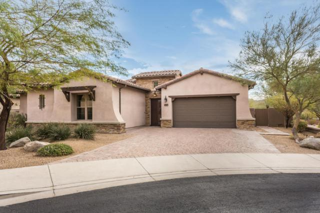 27417 N 86TH Lane, Peoria, AZ 85383 (MLS #5707349) :: The Laughton Team